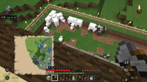 Minecraft_20201206170445