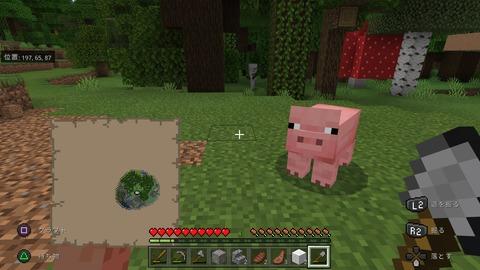 Minecraft_20201104211322