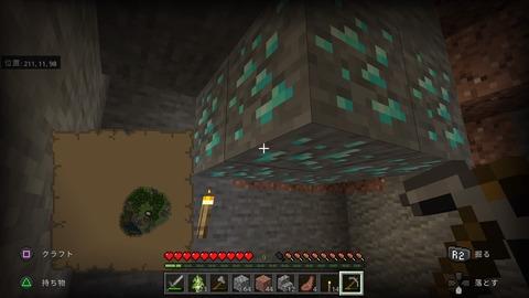 Minecraft_20201120134852