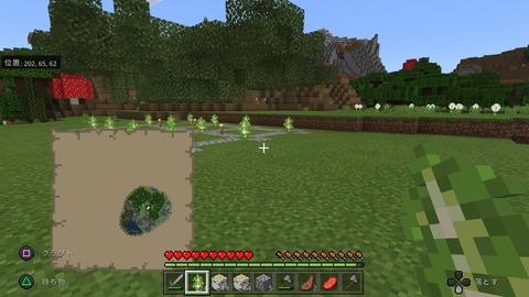 Minecraft_20201120135651