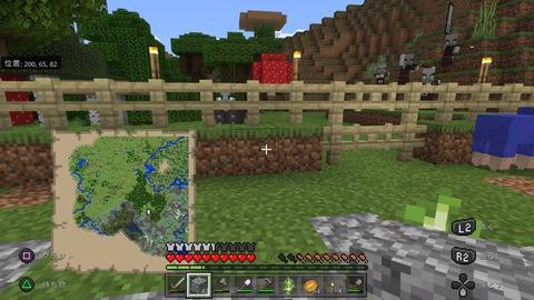 Minecraft_20210221214007