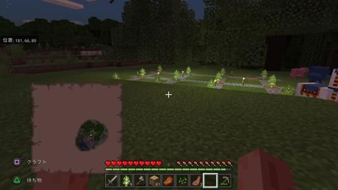 Minecraft_20201111112727