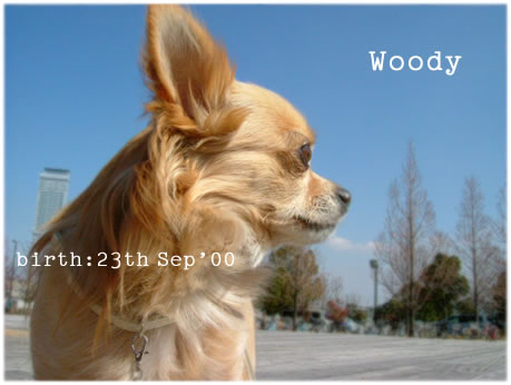 woody_profile