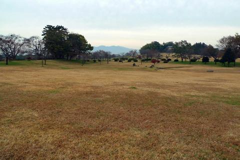 起伏のある広大な敷地にふかふかの芝、「大室公園」RUNが超楽しい!