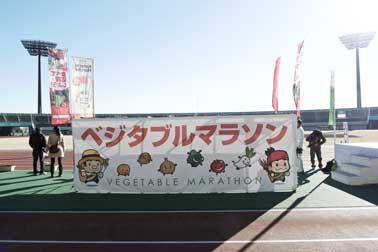 2013年の走り納め 第7回ベジタブルマラソンin熊谷