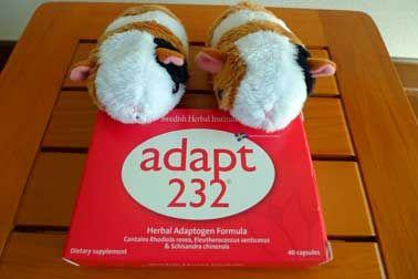 栄養ドリンクより効果的?ハーブサプリ『adapt232』