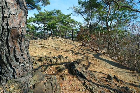 プチ登山で足腰強化! 織姫山から両崖山の登山コースが開放的で楽しい!