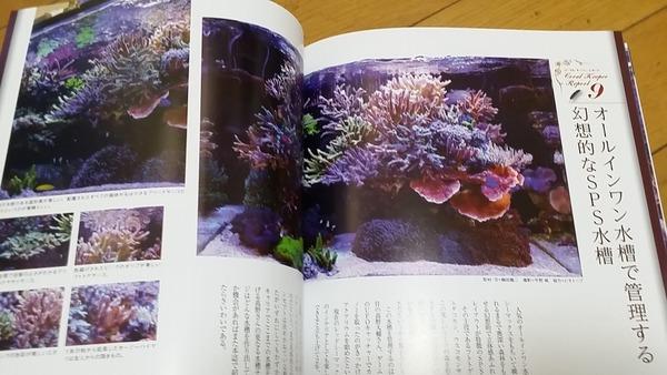 20160321_142418