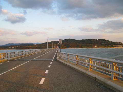 2009 (3)