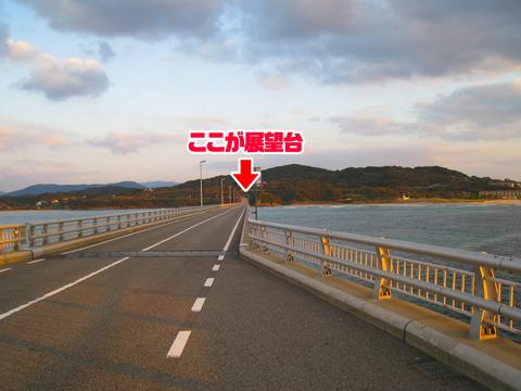 2009 (3) のコピー