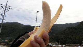 大坂城残石記念公園ASのバナナがめちゃうまかった