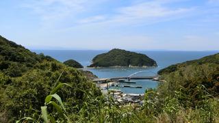 山から見下ろす戸津井漁港