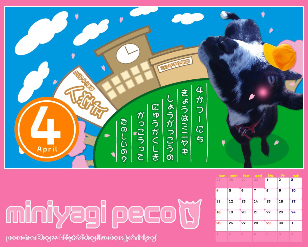 ペコちゃんのお誕生日 ミニヤギペコちゃんの気まぐれブログ