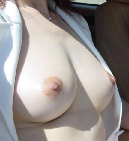 美乳 おっぱい エロ画像 (8)