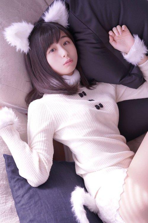 """くりえみさんのツイート: """"・ ○ ゆとりネコ. #猫の日… """""""