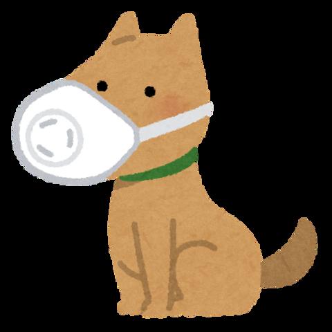 pet_dog_mask