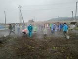 堆肥CIMG8605
