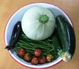 20130703 夏野菜収穫