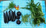 20130711 今日の収穫