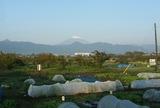 20131105 富士冠雪2