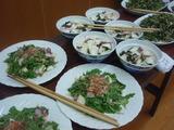 カブと水菜110045