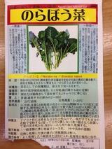 005_2のらぼう菜