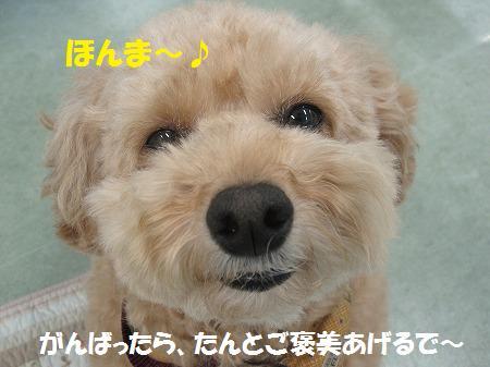 fudai7