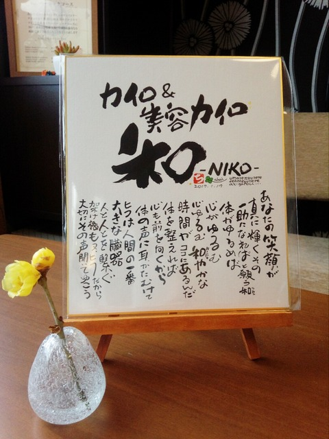 カイロ&美容カイロ 和-NIKO-3