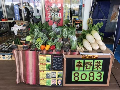 幸野菜8083-1