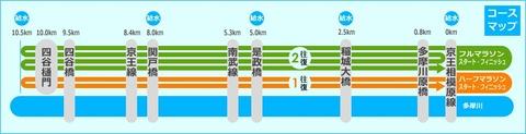 多摩川マラソングランプリNewYearレポ2 proceed2600さん登場(ジョグスタイル編)