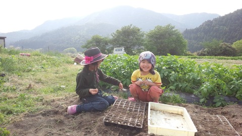 kids farm photo