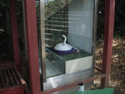 20110918-snakecenter03