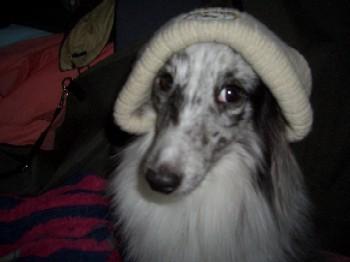 みんと帽子
