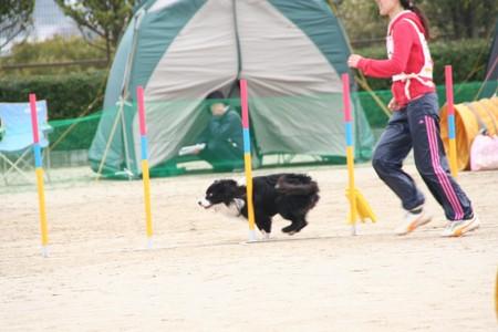 H.21.3.20 芦屋運動公園 075