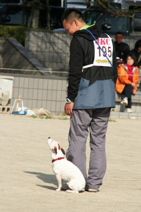 H.21.3.20 芦屋運動公園 111