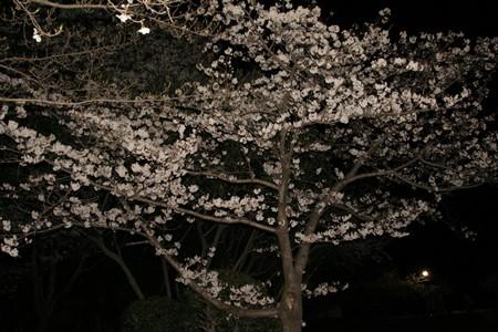 24 東平尾公園 009