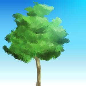 2011-11-20 樹木