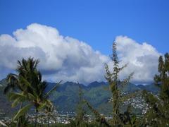 10 ハワイ 038