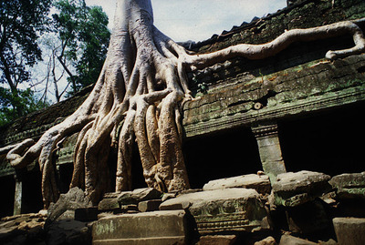 カンボジア020