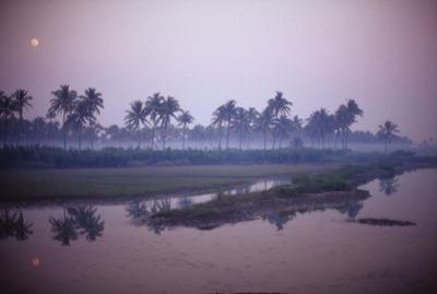 ミャンマー031