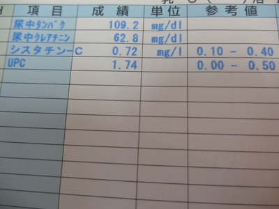 腎機能検査