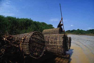 カンボジア031