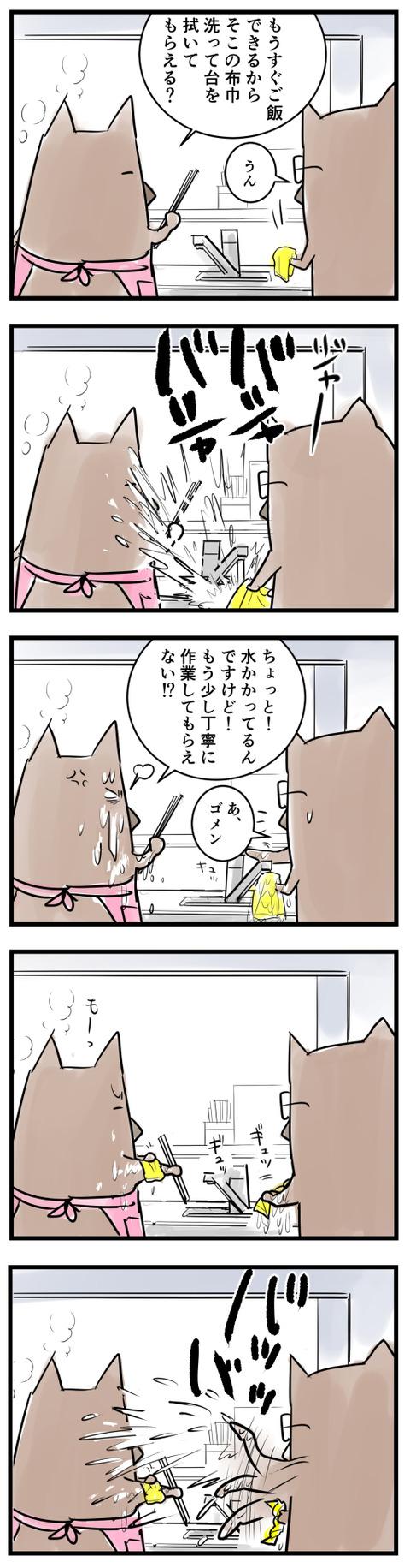 shibukis
