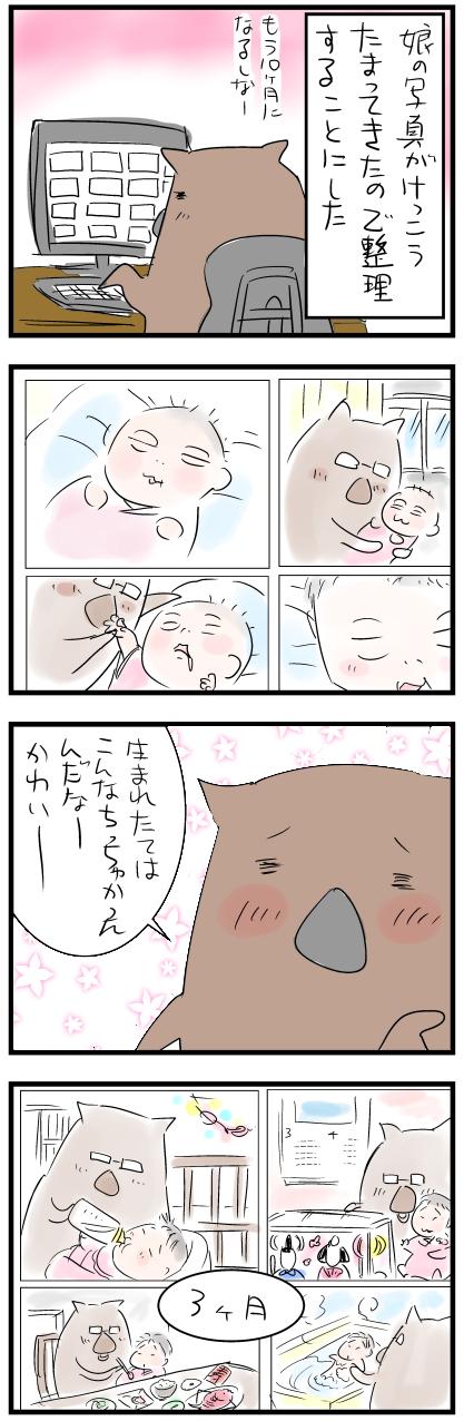 shashinカラー1