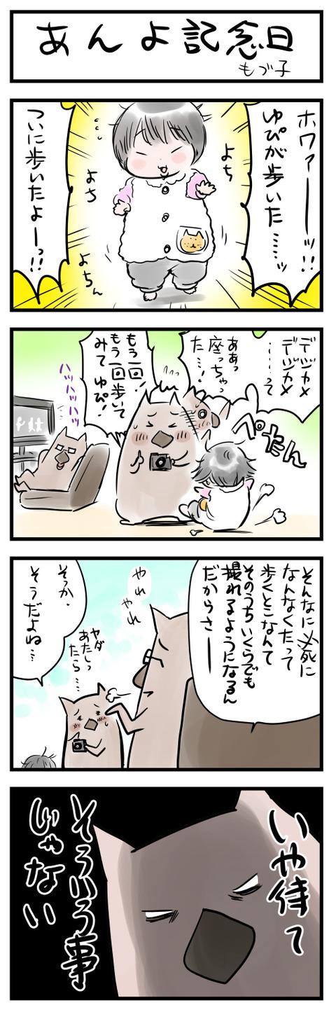 anyo小