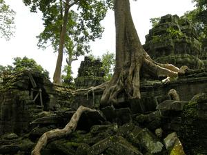 110819カンボジア - 112