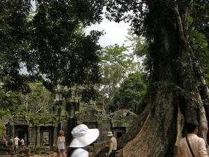 110819カンボジア - 137