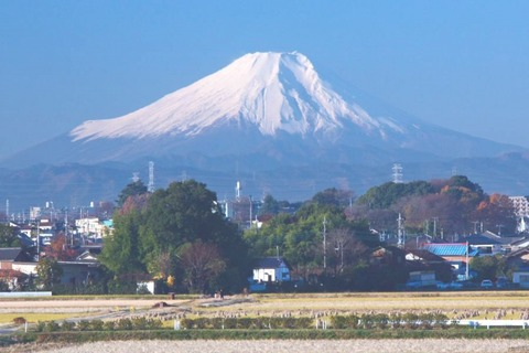 fujimishi