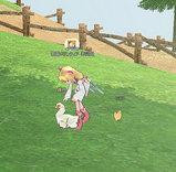 2008/10/4/マビ・卵とり