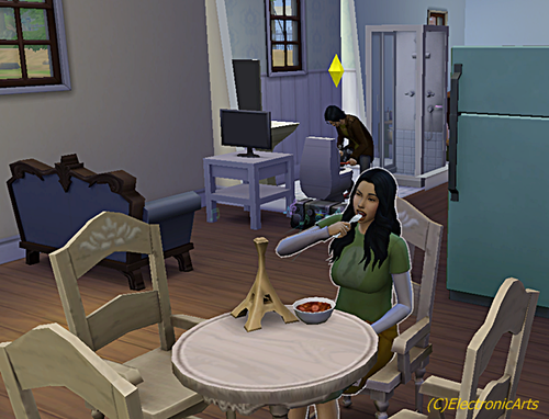 sims4eastn11
